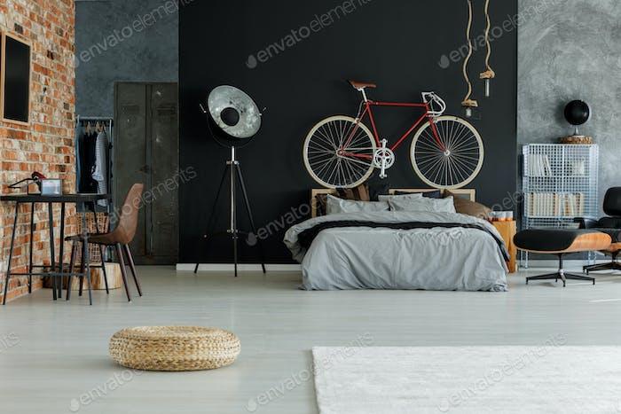 Stylish spacious bedroom