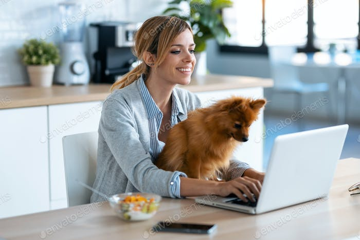 Cute little dog looking the laptop while her owner working with him in the kitchen at home.