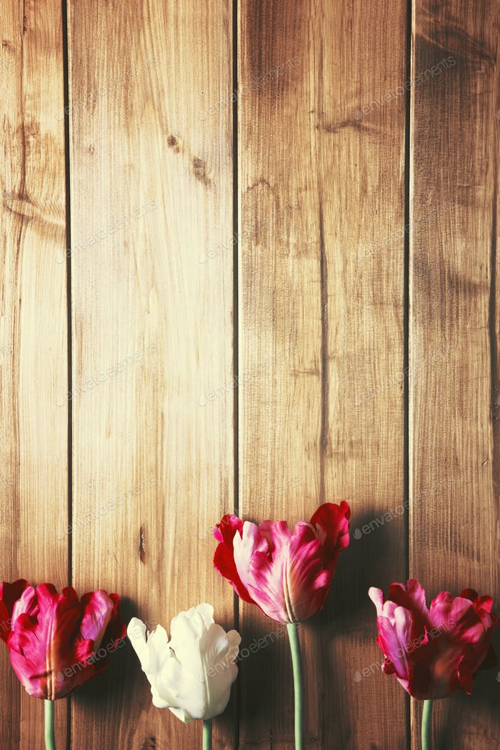 tulips on wooden top