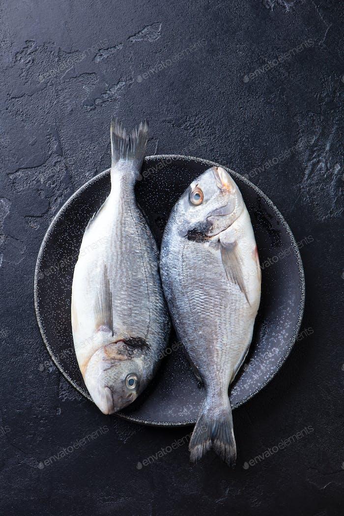 Roher Fisch Dorado auf einem Teller. Schwarzer Stein Hintergrund Ansicht von oben