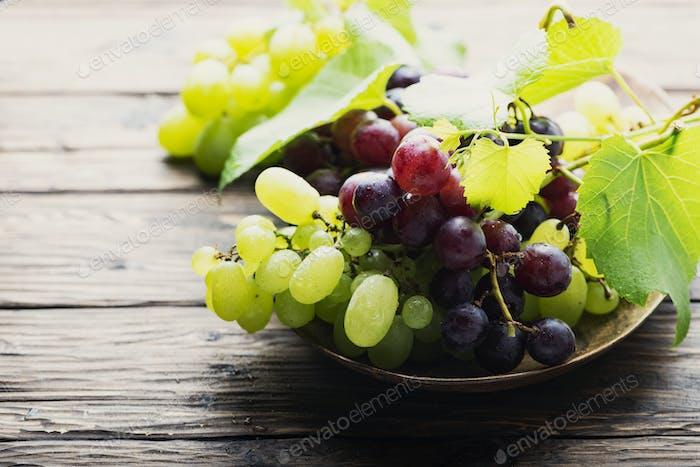 Sweet fresh grape