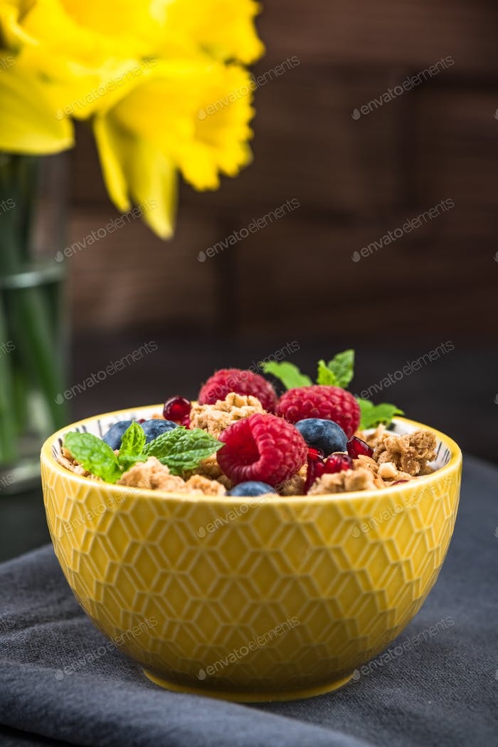 Breakfast bowl with granola,milk and berry fruits