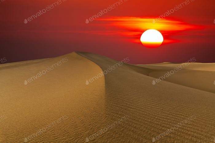 Beautiful sunset in the desert. Sand dune on the background of the setting sun
