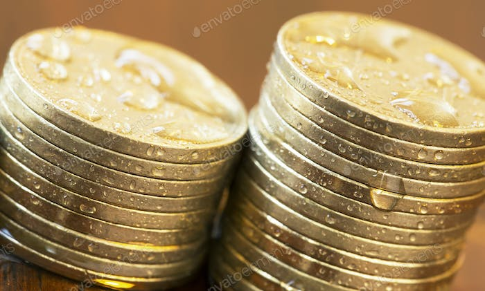 Interest rate growing concept - money coins