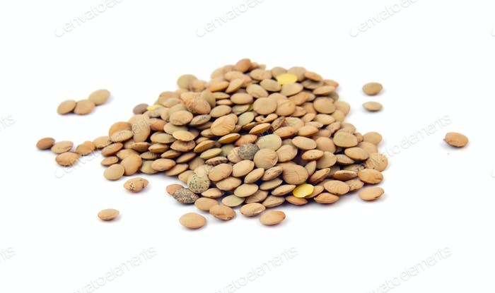 lentils isolated
