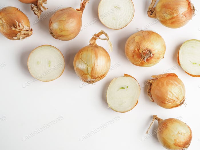 Onion seamless pattern isolated on white