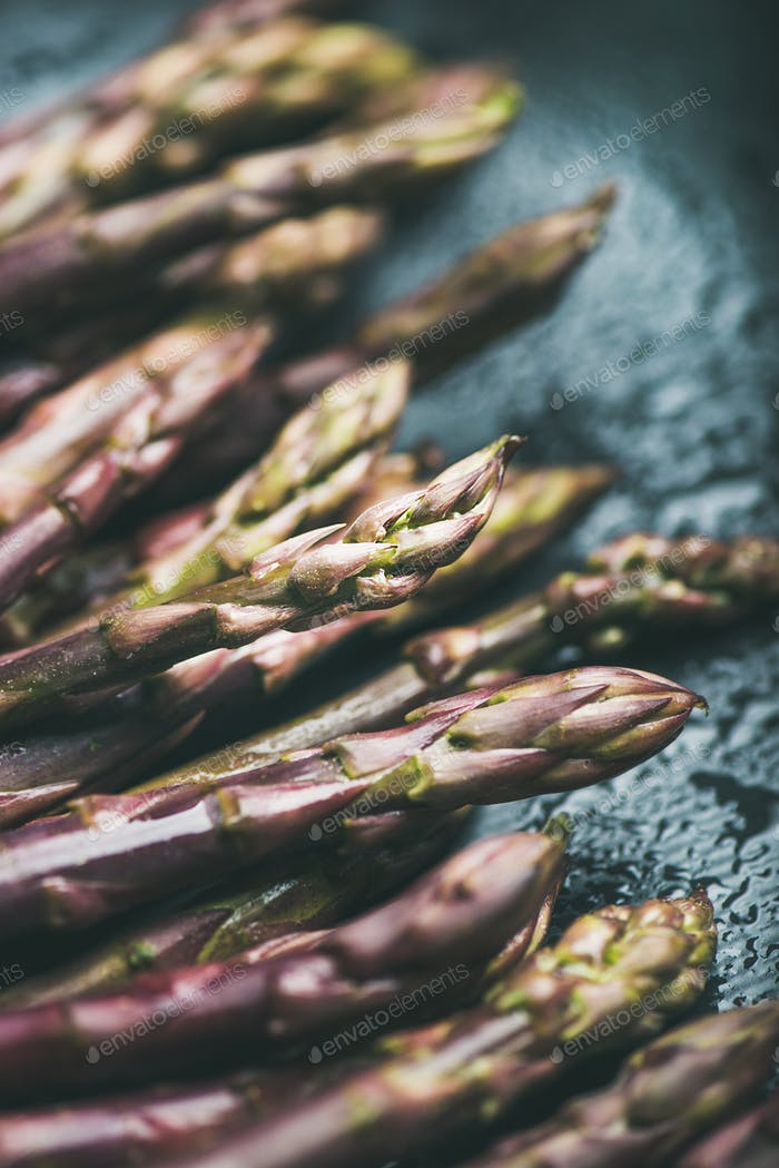 Fresh raw uncooked purple asparagus over dark background, vertical composition