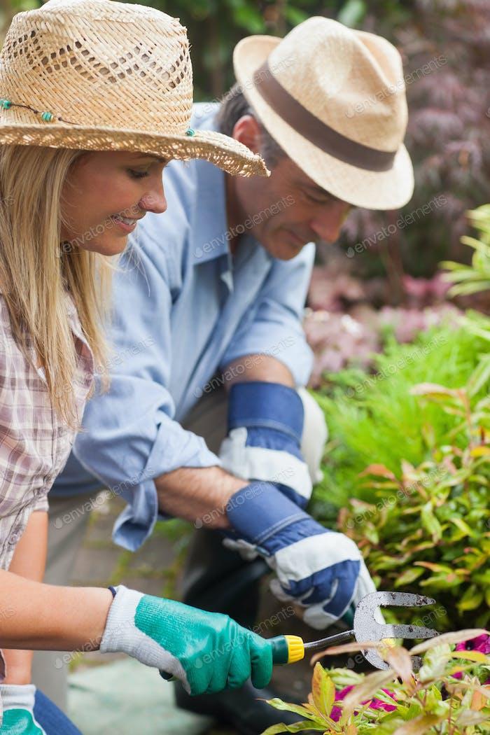Glückliches Paar Gartenarbeit zusammen tragen Hüte