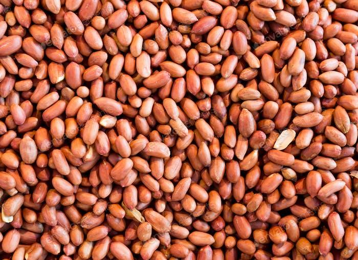 Group of peanut kernels