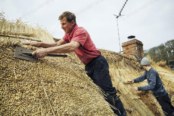 Man thatching a roof, dressing the thatch using a leggett.