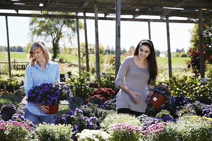 Zwei Frauen wählen blühende Pflanzen in einem Gartencenter.