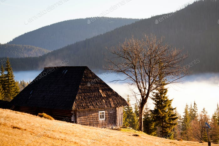 Wooden house among tree covered hills