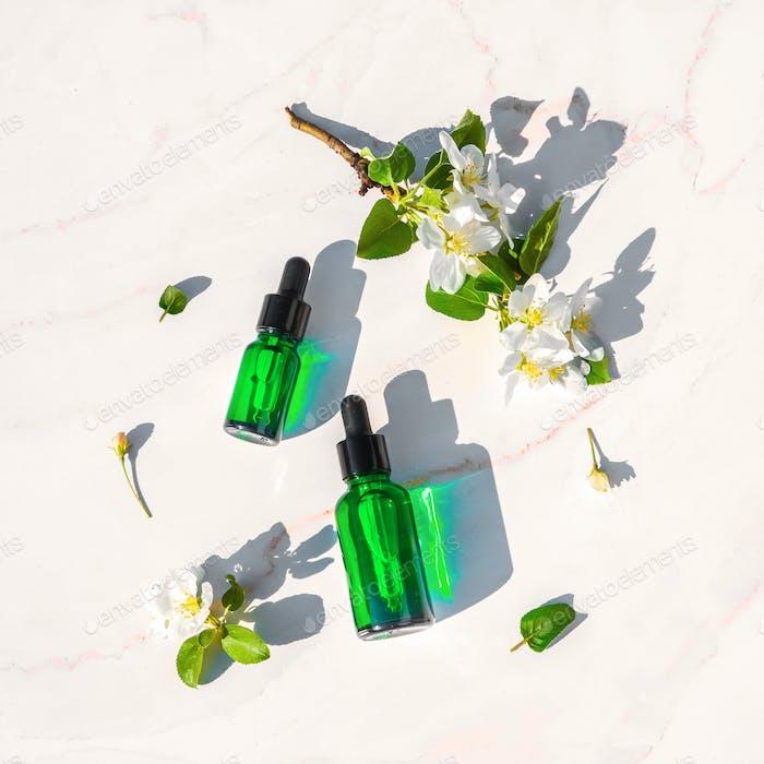 Serum mit Kräuterextrakten für die Hautpflege. Flache Lay Minimalismus