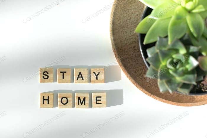 Stay safe written by wooden letters and potted succulent houseplant. Healthcare concept.