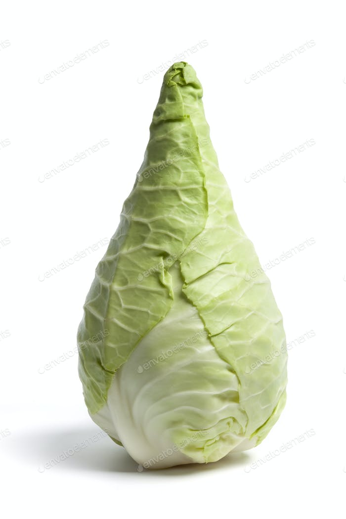 Whole fresh green Pointed Cabbage