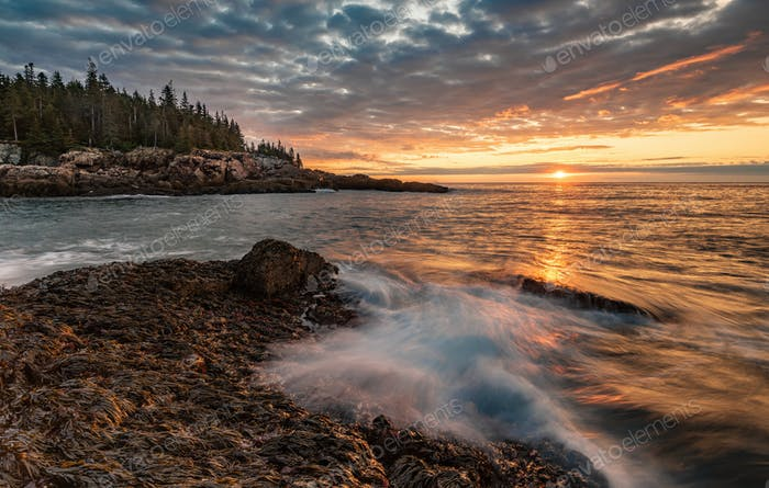 Sunrise in Acadia National Park