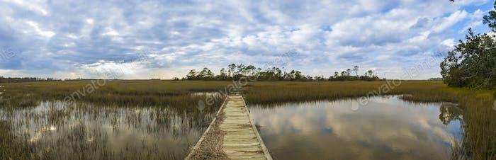 180 degree South Carolina panorama