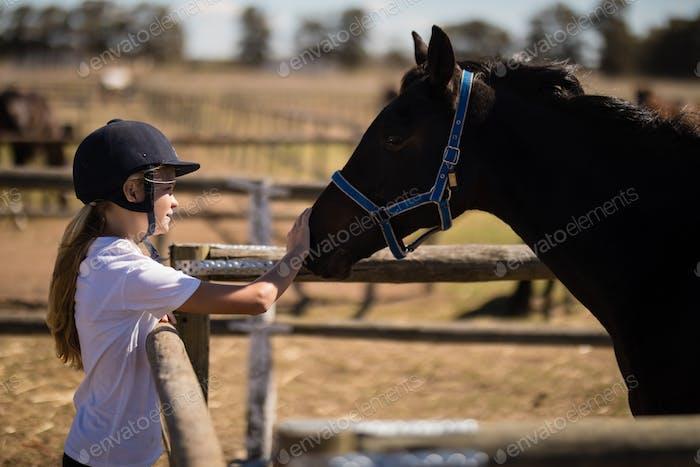 Mädchen streichelte ein braunes Pferd in der Ranch