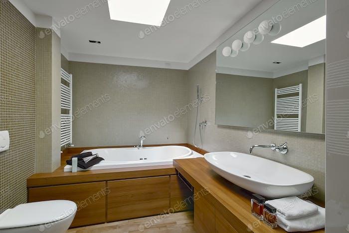 Interiors Shots of a Modern Bathroom
