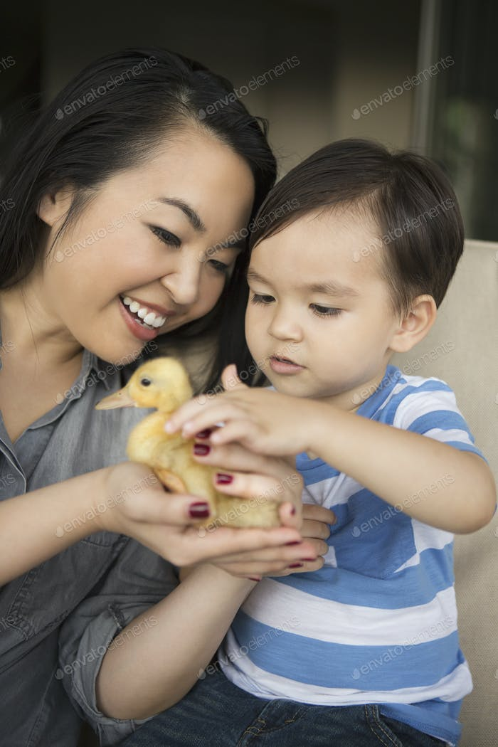 Smiling woman holding a yellow duckling in her hands, her young son stroking the animal.