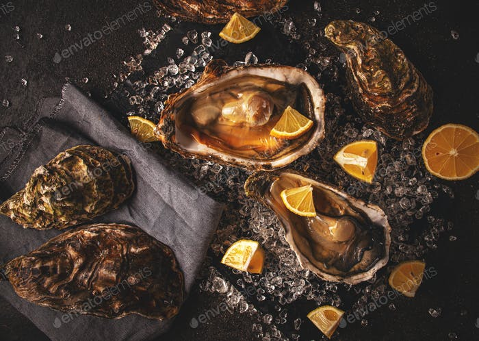 Fresh oysters on crushed ice