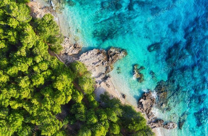 Beach and forest as a background. Hvar island, Croatia