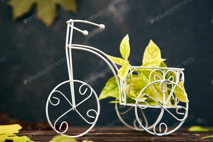 Creative layout of bicycle miniature with colorful autumn leaves.