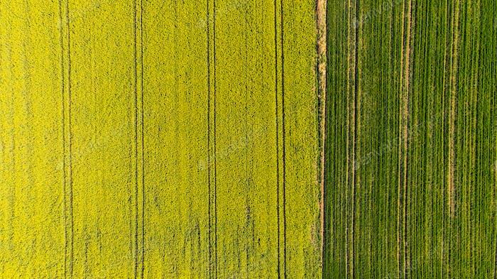 Abstrakte Muster in Ackerland Felder im Frühjahr, Luftaufnahme, dro