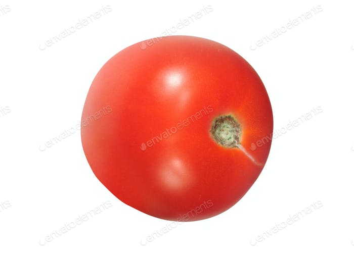 Bright red tomato isolated