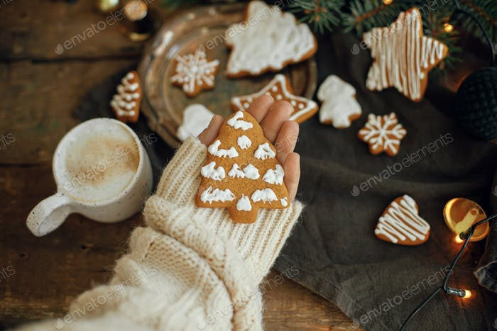 Winter hygge. Hand in cozy sweater holding christmas tree gingerbread cookie on rustic background
