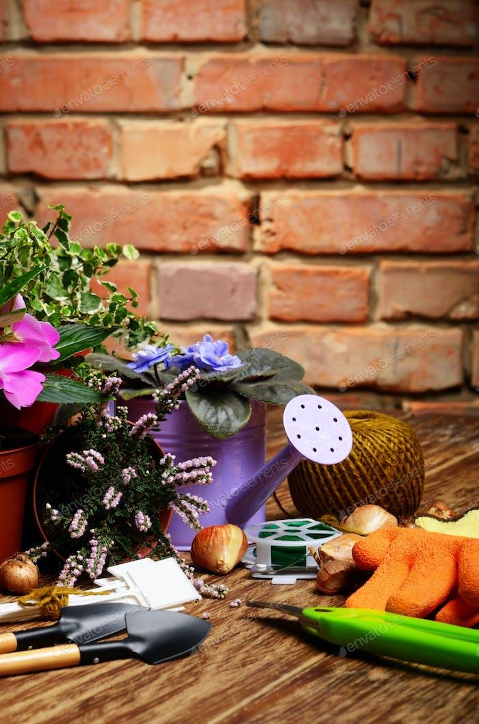 Gartenwerkzeuge Schaufel Rechen Etiketten und Gießkanne auf Holz