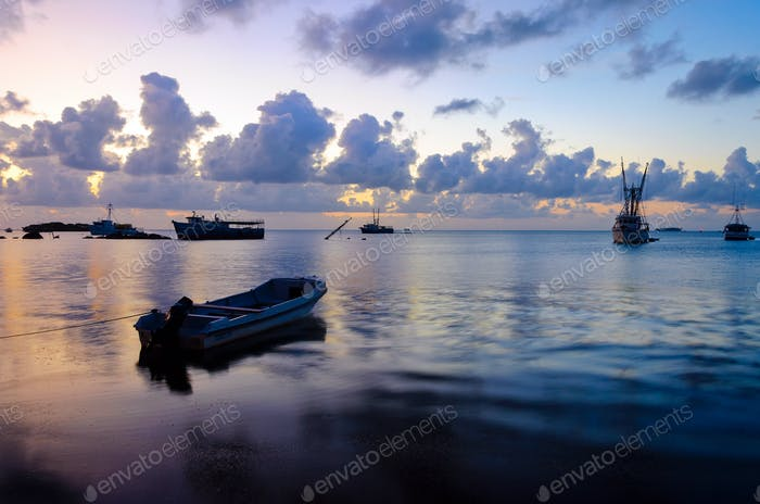 Early Morning Boats