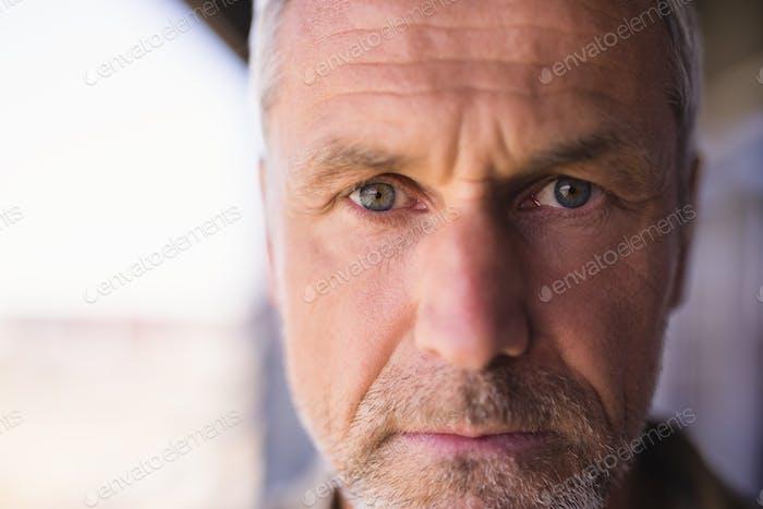 Close up portrait of confident mature businessman