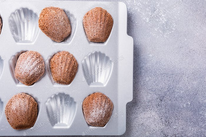Homemade chocolate madeleine cookies