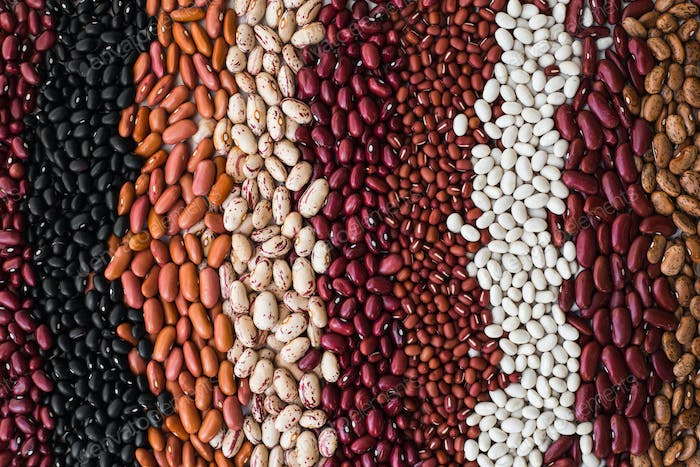 Different varieties of bean seeds. Beans background.