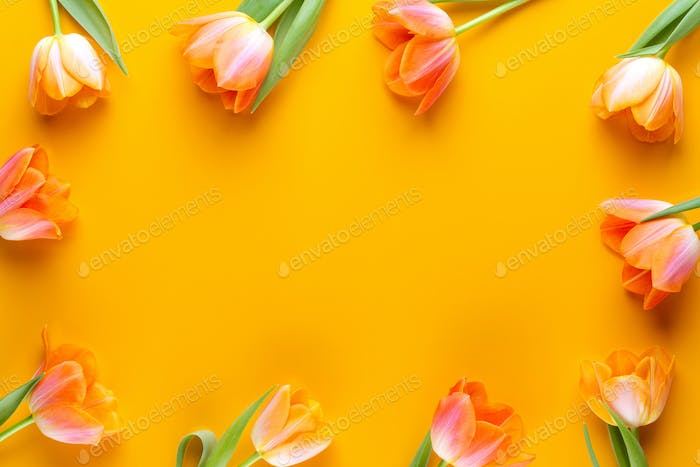 Yellow pastels color tulips on the yellow background. Retro vintage style.