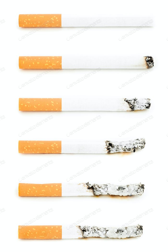 Different cigarettes burning against a white background