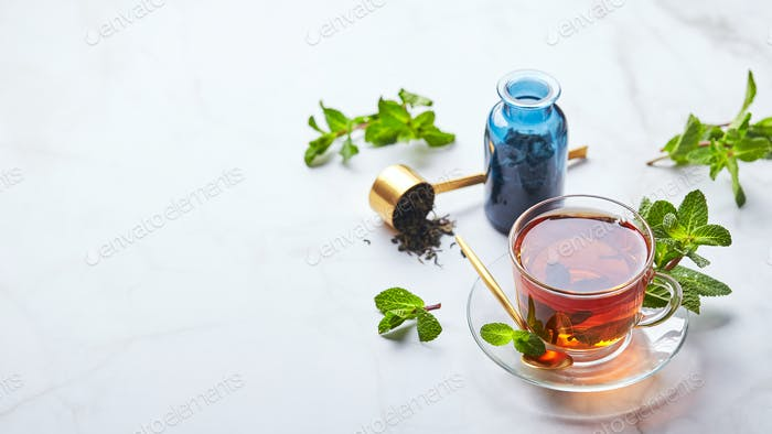 Schwarzer Tee im transparenten Glasbecher mit Minzblättern. Beruhigender Tee, Anti-Stress