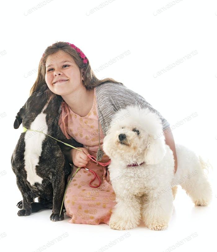 girl and little dogs