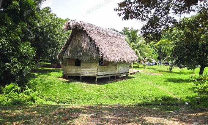 Indigenous House With a Thatch Roof in Belize