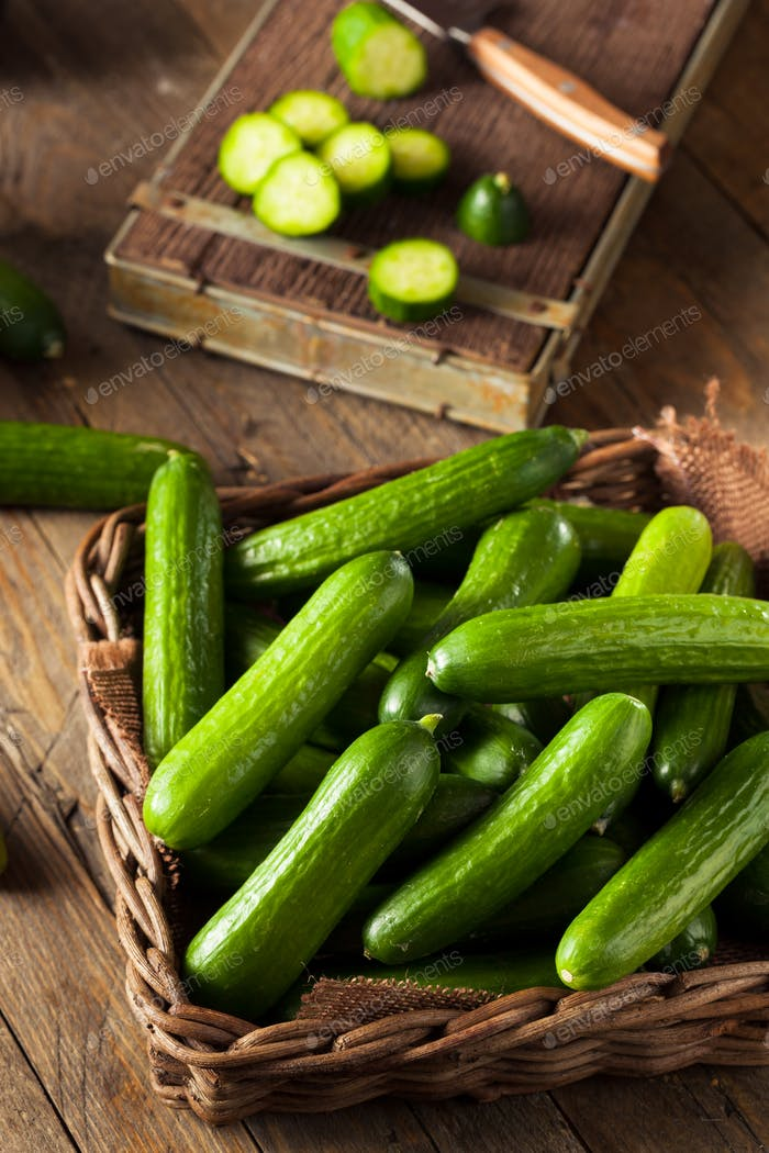 Raw Organic Mini Baby Cucumbers