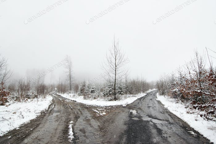 Bleak crossroad in the winter