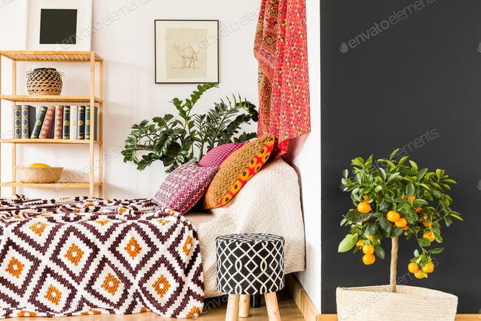 Orange tree in bedroom