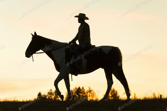Cowboy riding on horseback in a Prairie landscape at sunset.