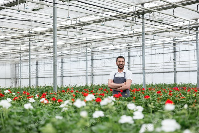 Happy young man standing in greenhouse near plants