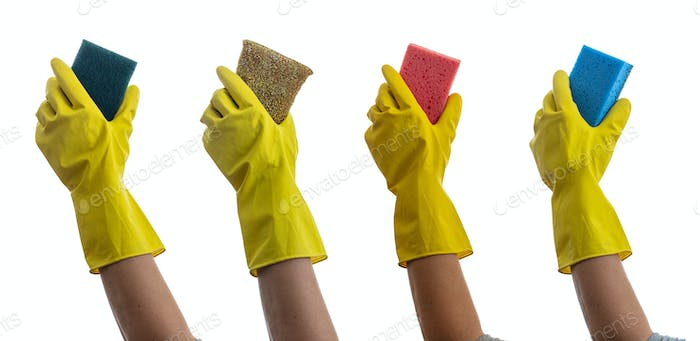Cleaning sponges on gloved hands isolated against white background.