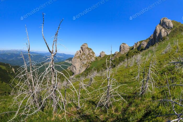 The Ciucas Mountains