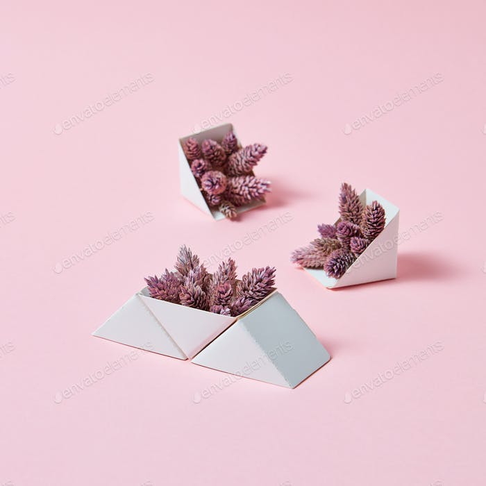 A set of triangular cardboard boxes with pine cones on a pink background with copy space. A creative
