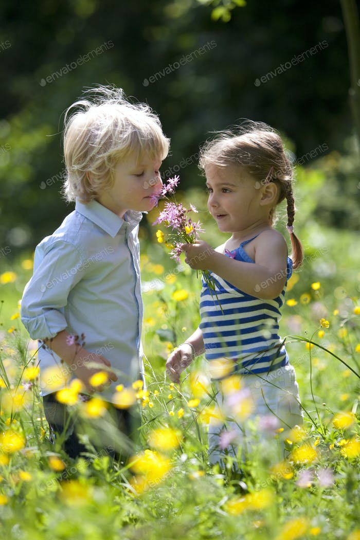 Little Boy And Girl Picking Flowers In The Parc