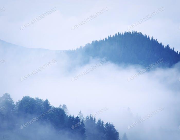 Mountain landscape.